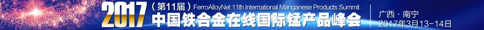 第11届南宁国际锰峰会