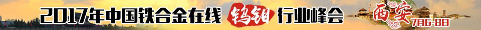 中国铁合金在线2017年钨钼行业峰会
