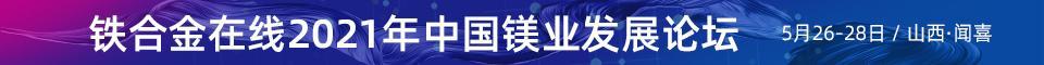 2021年金属镁行业峰会-闻喜