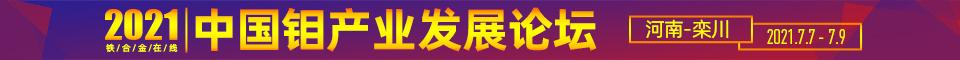 2021年中国钼产业发展论坛