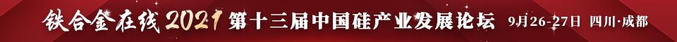 2021年第十三届金属硅行业峰会-成都